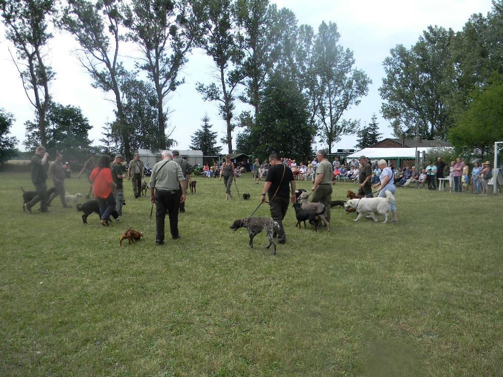 Auftritt bei Dorffesten